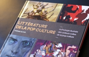 Litterature de la Pop Culture Livre