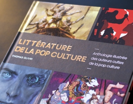 Litterature de la Pop Culture Livre