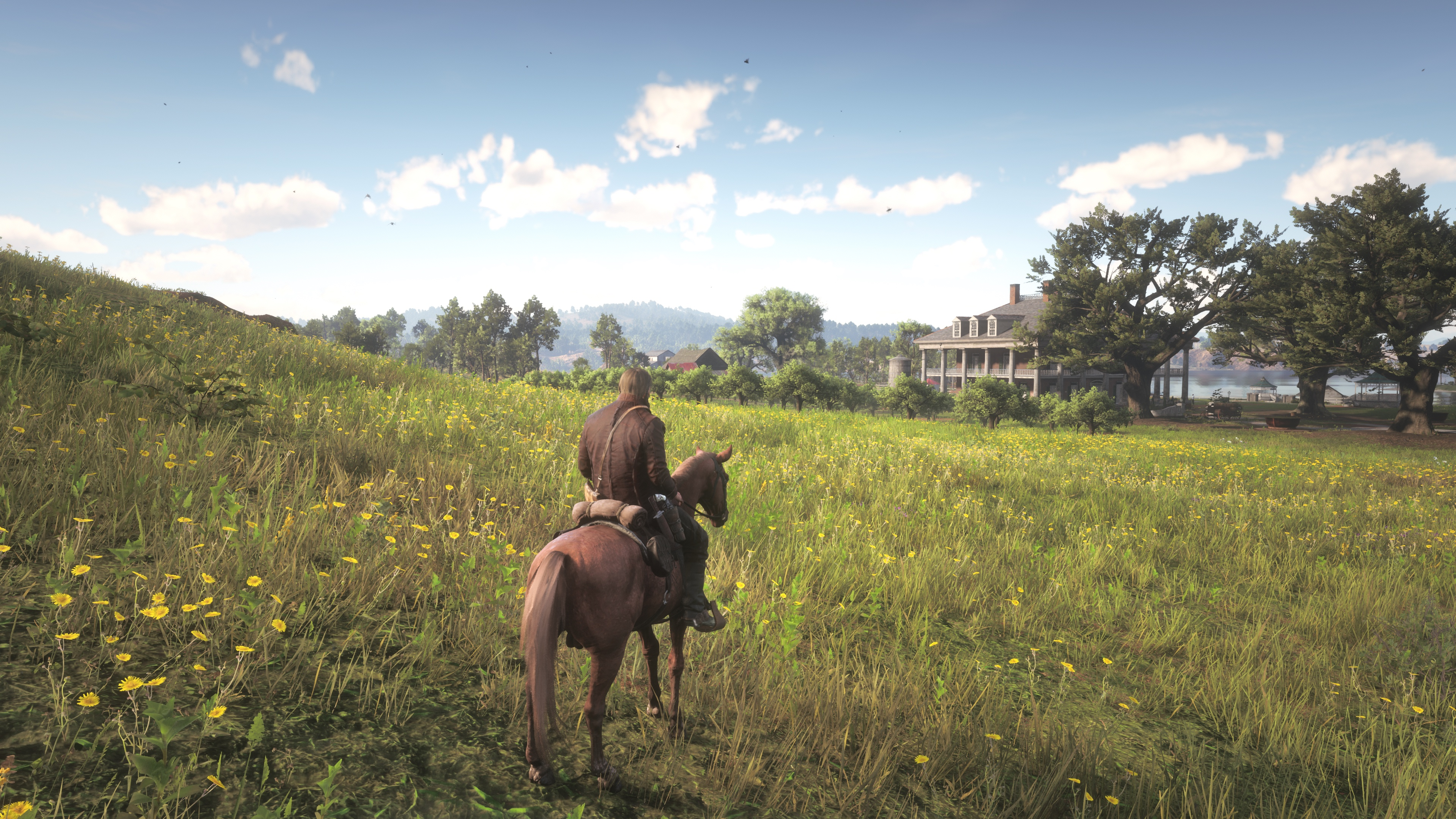 Red Dead Redemption 2 4K Native Xbox One X