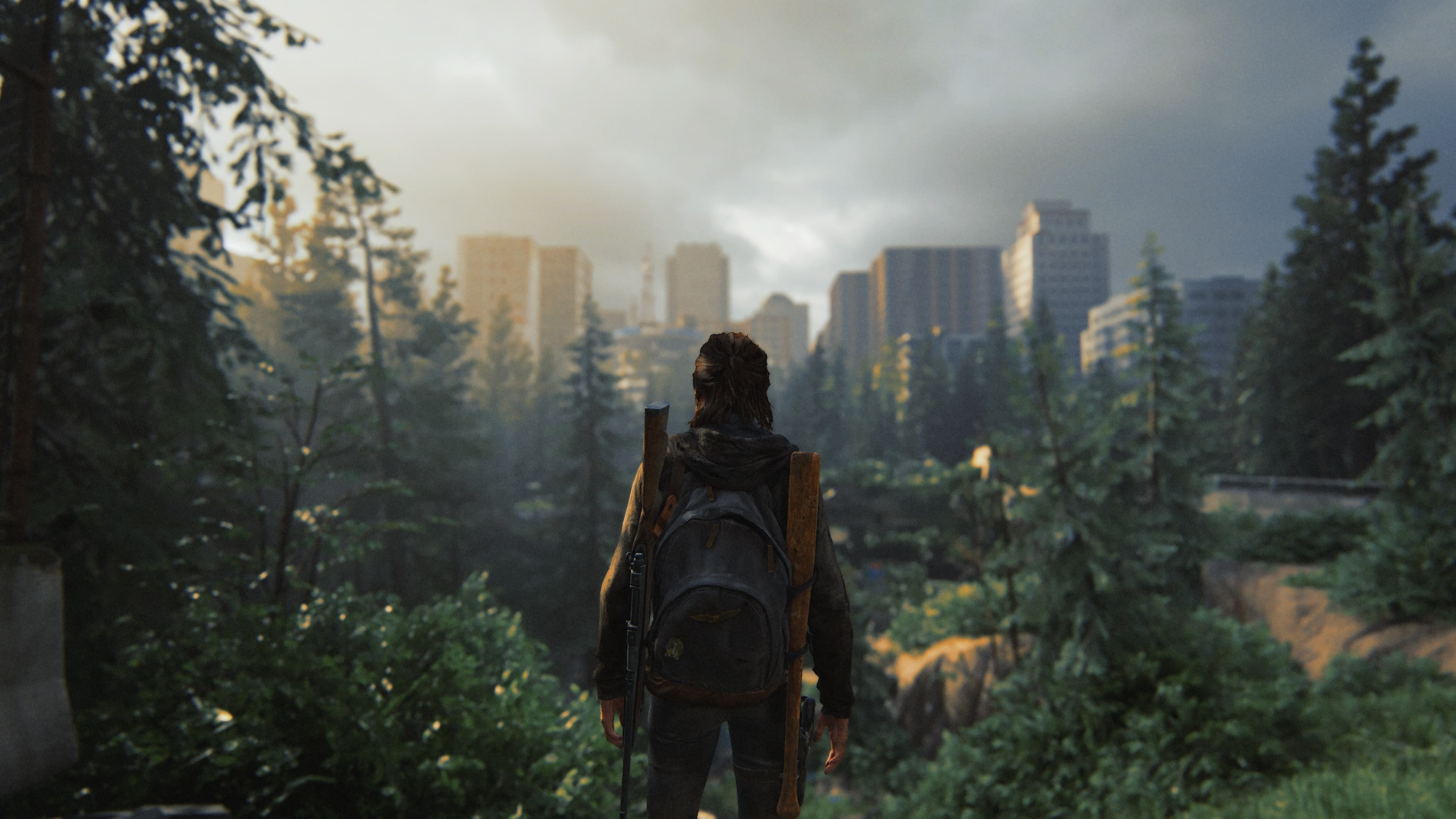 The Last Of Us 2 PS4 Pro